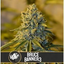 Bruce Banner 3 · Blimburn...