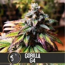 Gorilla Glue 4 · Blimburn...