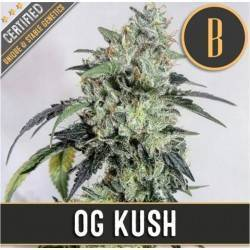 OG Kush · Blimburn Seeds