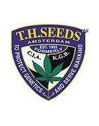 T.H Seeds Feminizatti